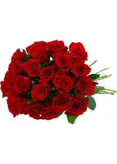 24 Premium Red Roses